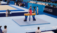 Նախագահ Սարգսյանը շնորհավորել է ամառային օլիմպիական խաղերի բրոնզե մեդալակիր Արթուր Դավթյանին
